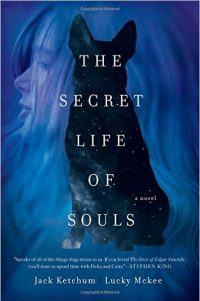 The Secret Life of Souls Cover
